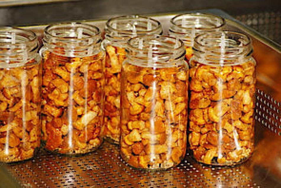 Fink's - nuts
